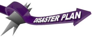 disaster plan purple trans copy
